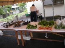 静岡県 伊豆の国市商工会-きょうの野菜