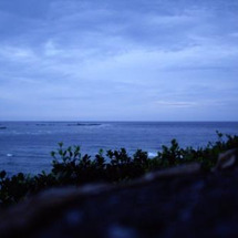 また沖縄で!!