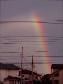 「銀の葉」-rainbow
