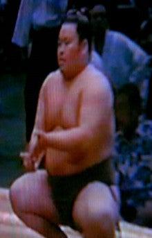 木瀬部屋夏場所 & 8月のお誕生日   いっちゃん(清瀬海 孝行 関 ...