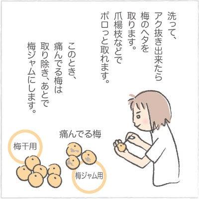 日々の泡・絵日記-うめ02