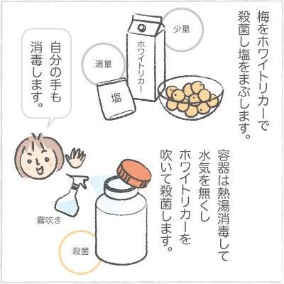 日々の泡・絵日記-うめ04