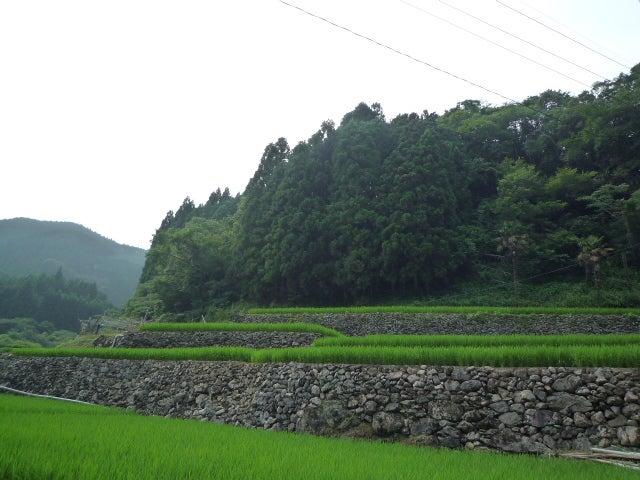 球磨村立高沢小学校