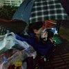 大雨でもの画像