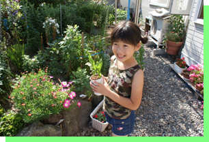 Hanako diary  北海道のすずらんを全国に・・・