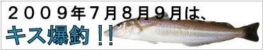 兵庫県赤穂、相生の釣り情報|釣りきち三ちゃんのサーフフィッシング-2009年7月、8月、9月はキスが爆釣!!