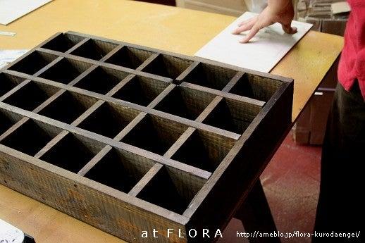 フローラのガーデニング・園芸作業日記-コレクションボックス制作