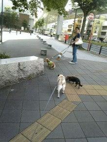 ☆カヨライフ☆-090831_143153_ed.jpg