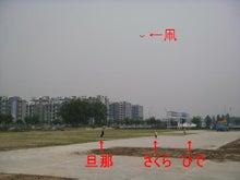 さくらとひでの観察日記 IN 北京-凧揚げ