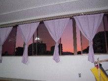 菜の花YOGA-窓