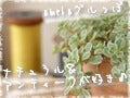 ~nijiiro Life~-ナチュアン