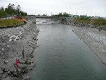 気まぐれな世界-鮭の遡上する川
