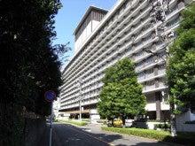 スーパーB級コレクション伝説-izumiya6