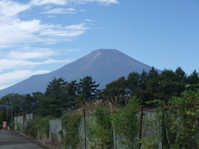 To live is to love.-FUJI
