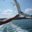 鳥羽への旅 ~2日目…