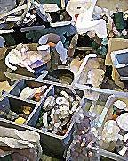ドリームぽろぽろ。空想ダイアリー【夢日記と空想】-dream poroporo by Nemury aka. TsuyaTsuya aka. 10
