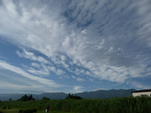 諏訪ローターアクトクラブ-上川4