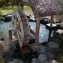 千葉の温泉に行ってき…