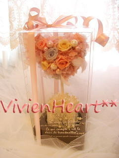Vivien Heart**-ハートトピアリー専用BOX