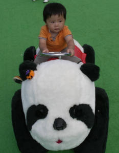 ハイヲピラ学習帳-珍熊猫団