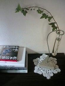 できれば本に埋もれて眠りたい-matsumoto