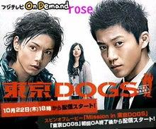 """ひとりじゃない 一人暮らしの""""ひとりごと""""-東京DOGS"""