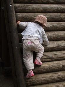 日々 更に駆け引き-登る登る