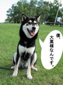 VIVA☆ROCK!VIVA☆ROLL!!