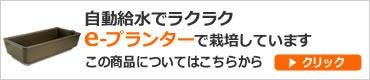 グリーン・グリーン♪水耕栽培・ハイポニカ栽培記-自動給水でラクラク eプランター