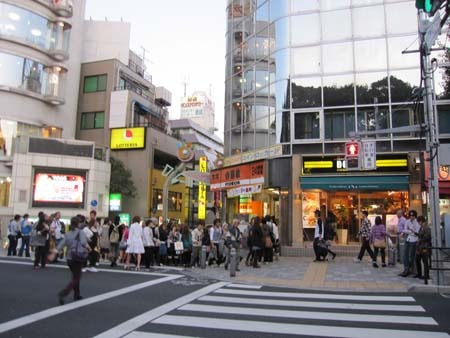 M・ブルテリアRexの成長日記(^^♪-竹下通り