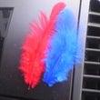 赤い羽、青い羽。秋は…