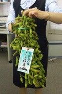 花の総務部がゆく!-枝豆
