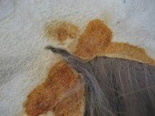大木毛皮店工場長の毛皮修理リフォーム-毛皮コート リメイク