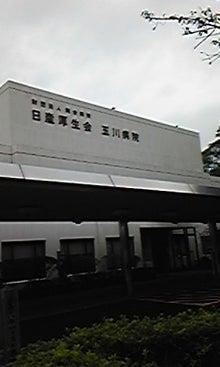 行政書士みんみんのblog-DVC00100.jpg