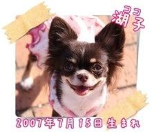 ☆★COCO・MI~YA!★☆