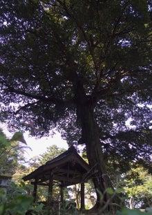 倉吉在住のブログ-R0028793.jpg