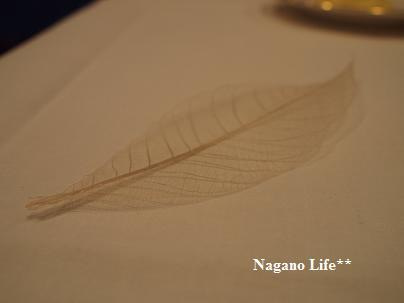 Nagano Life**-葉っぱ