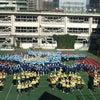 港南小学校、雲の上からパチリっ!の画像