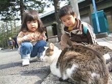 おかずブログ-ねこ@箱根彫刻の森