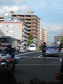 ファンタスティックボックス コアラの館-DVC00007.jpg