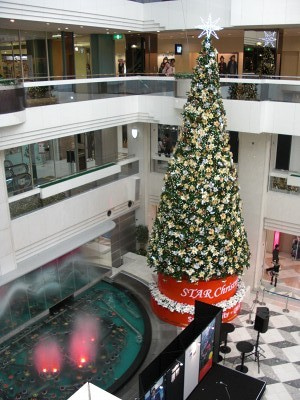 NEC特選街情報 NX-Station Blog-サンシャインシティ アルパ 噴水広場のツリー