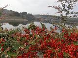 円居ママのブログ-三春ダム湖
