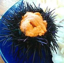 ときどきグルメになりたくなるブログ-男鹿海鮮市場のイクラ丼は宝石箱です6