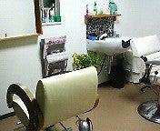 隠れ家hairsalon   ta-e-200911081923000.jpg