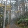 三峯神社のオオカミさまは白いお姿!?その2 群馬県の画像