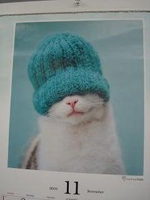 $びびん☆こゆっきー ときどき音楽-冬のネコ