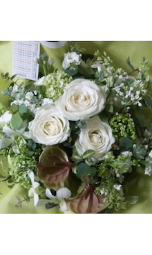 うさぎと花の日々-SA3B0221.jpg