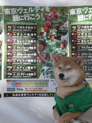 創立313年?!東京ヴェルディ1696-2009日野市産業祭り08