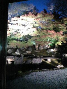 祇園の住人 お水編-091119_1718~0003.jpg