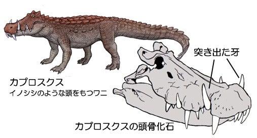 川崎悟司 オフィシャルブログ 古世界の住人 Powered by Ameba-カプロスクス